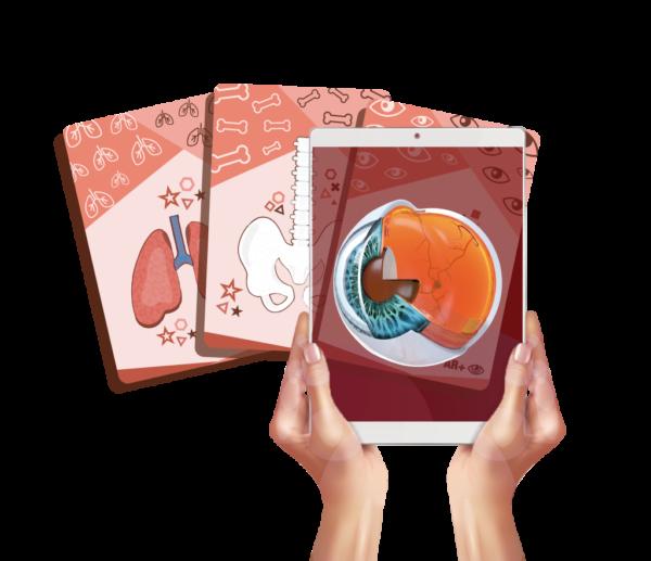 Body cards